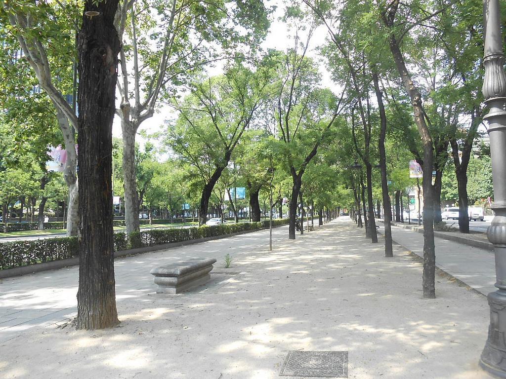 Piso en alquiler en Castellana en Madrid - 353504388