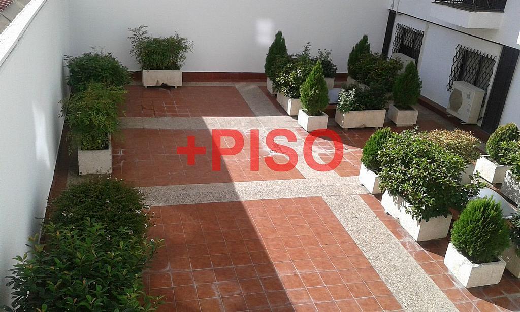 Estudio en alquiler en Lista en Madrid - 355151290