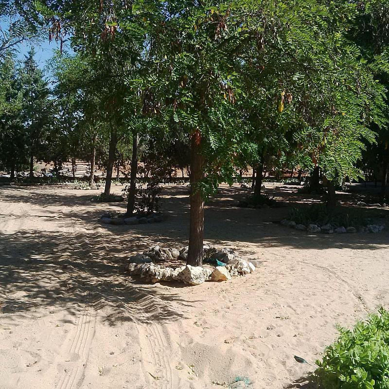 Jardín - Casa rural en alquiler de temporada en carretera Finca, Navalcarnero - 209626608
