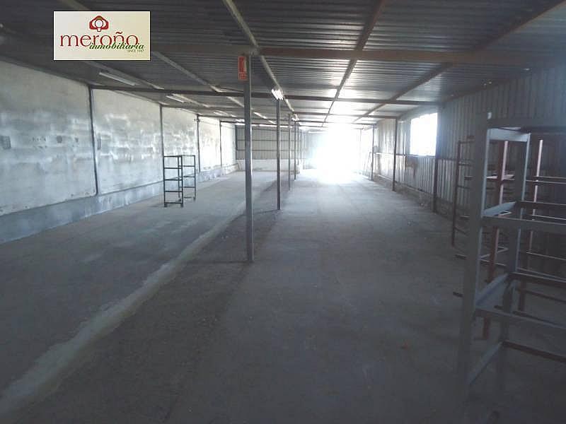 Foto - Nave industrial en alquiler en calle Partida Altabix, Altabix en Elche/Elx - 287855805
