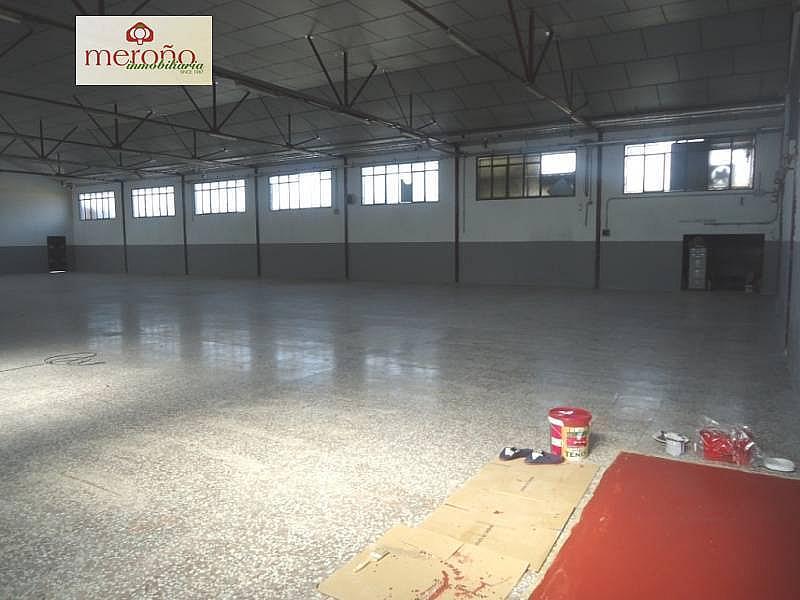 Foto - Nave industrial en alquiler en calle Partida Altabix, Altabix en Elche/Elx - 287855817