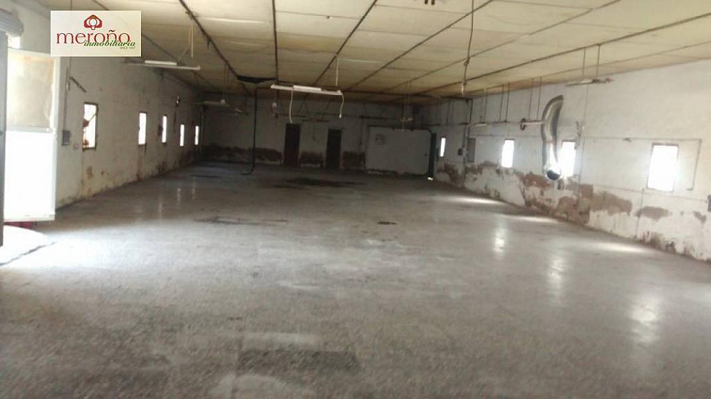 Foto - Nave industrial en alquiler en calle Llano de San Jose, Llano de San Jose en Elche/Elx - 292714744