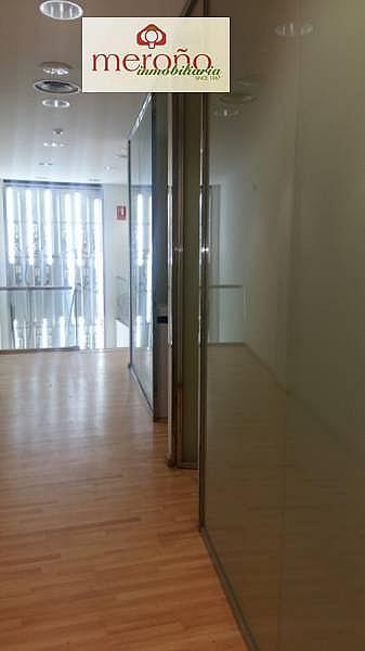 Foto - Local comercial en alquiler en calle Centro, El Raval - Centro en Elche/Elx - 295943440