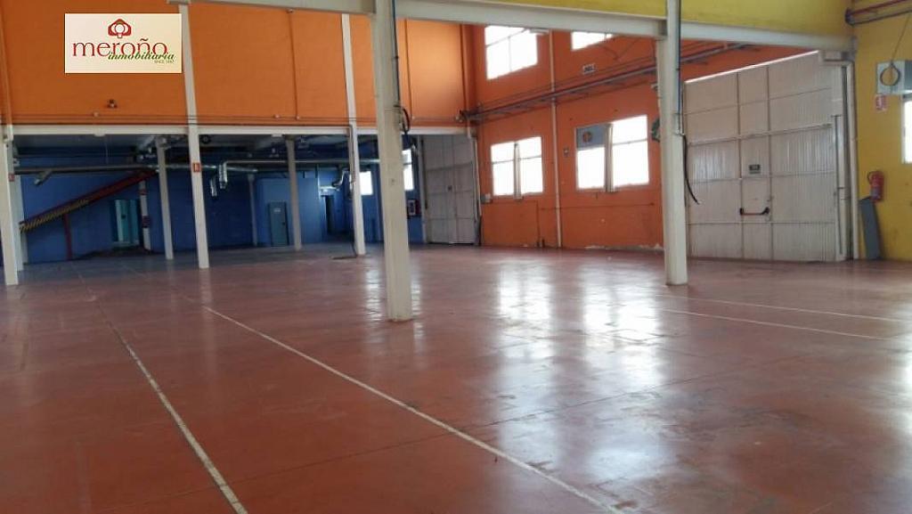 Foto - Nave industrial en alquiler en polígono Carrus, Elche/Elx - 315003866