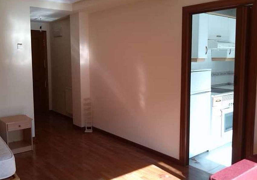 Vestíbulo - Estudio en alquiler en calle Fuente la Plata, La Argañosa en Oviedo - 313877448