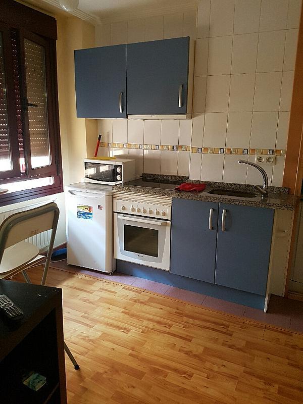 Estudio en alquiler en calle Ricardo Montes, Ciudad Naranco en Oviedo - 317595124