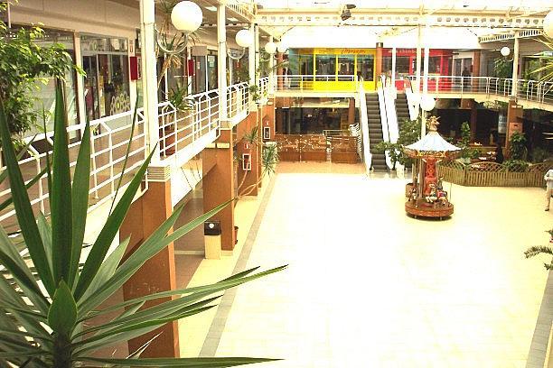 Detalles - Local en alquiler en calle Atenas, Punta Galea en Rozas de Madrid (Las) - 220812858