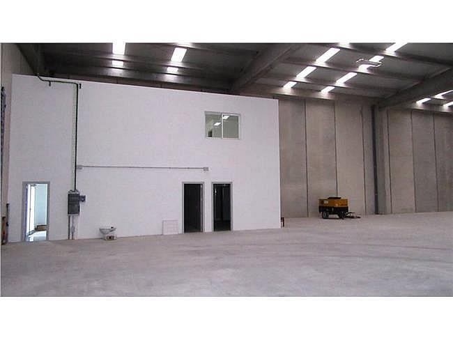 Nave industrial en alquiler en Martorell - 322283965
