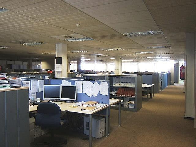 Imagen del inmueble - Oficina en alquiler en calle De Josep Pla, Sant martí en Barcelona - 282524099