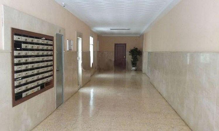 Local comercial en alquiler en calle Valle de Laguar, El Botànic en Valencia - 353129153