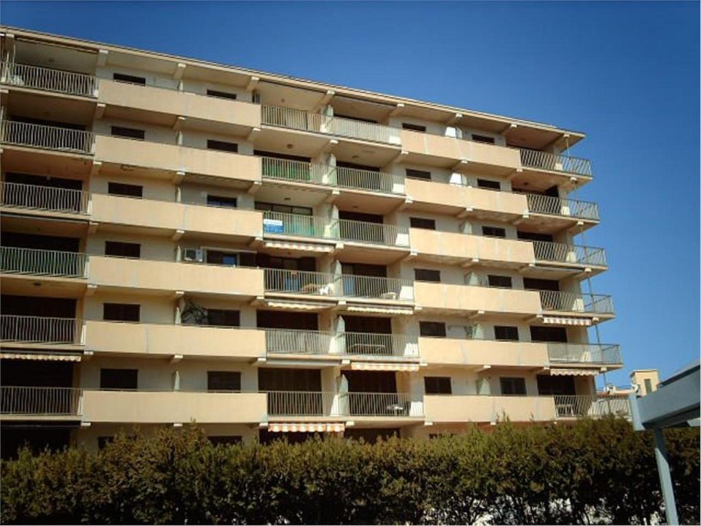 Apartamento en venta en Escala, L´ - 361501633