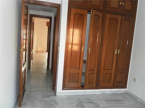 Piso en alquiler en Centro en Córdoba - 353825389