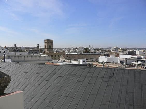 Piso en alquiler en San Gil en Sevilla - 329016429