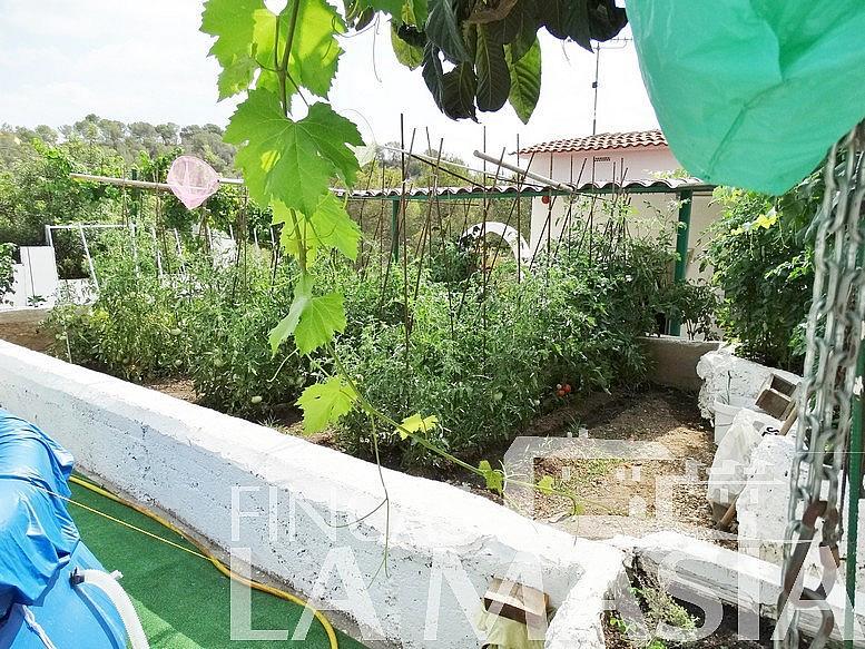 Casa en alquiler opción compra en Can Surià en Olivella - 302274293