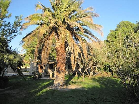 Chalet en alquiler en urbanización El Condado, Nuez de Ebro - 289139352
