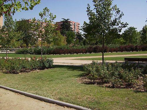 Piso en alquiler en calle Corindon, Los Rosales en Madrid - 328552956