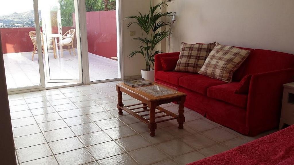 Piso en alquiler en calle Arquitecto López Echegarreta, Tafira en Palmas de Gran Canaria(Las) - 301827803