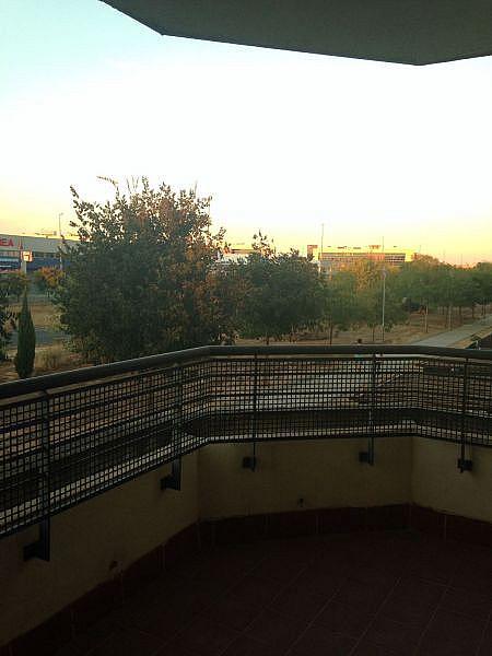 Foto - Piso en alquiler en calle Pisa, Mairena del Aljarafe - 326372986