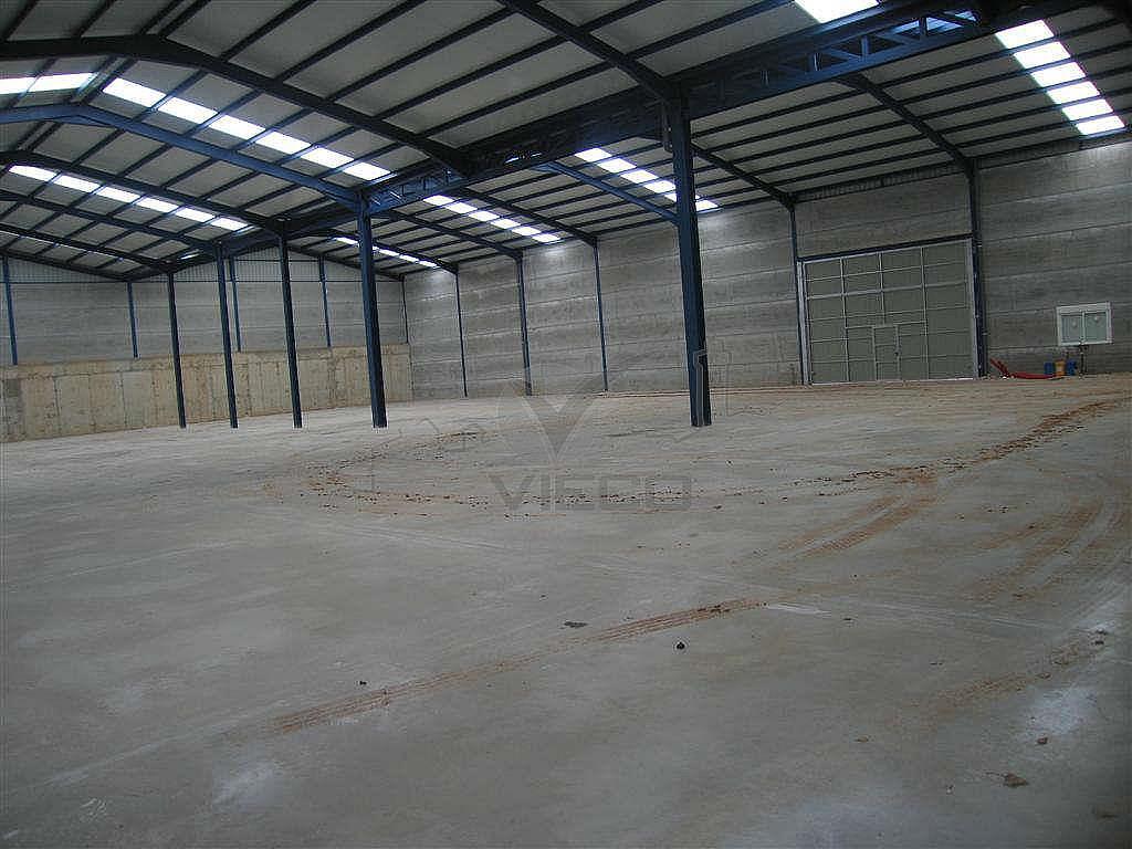 IMG_2751.JPG - Nave industrial en alquiler en calle Fercusa a Talavera, Cuenca - 337435143