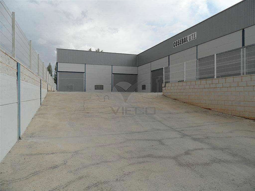 SAM_1421.JPG - Nave industrial en alquiler en calle Fercusa a Talavera, Cuenca - 337435146