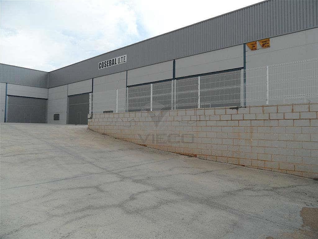 SAM_1422.JPG - Nave industrial en alquiler en calle Fercusa a Talavera, Cuenca - 337435149