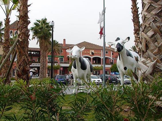 Local en alquiler en Churriana en Málaga - 155560394