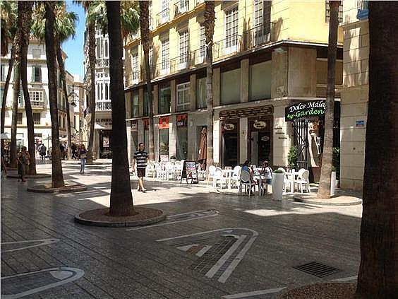 Oficina en alquiler en Centro en Málaga - 156229151