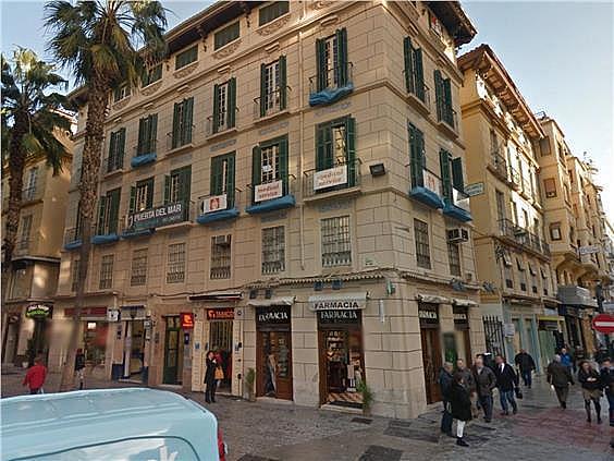 Oficina en alquiler en Centro en Málaga - 156229163