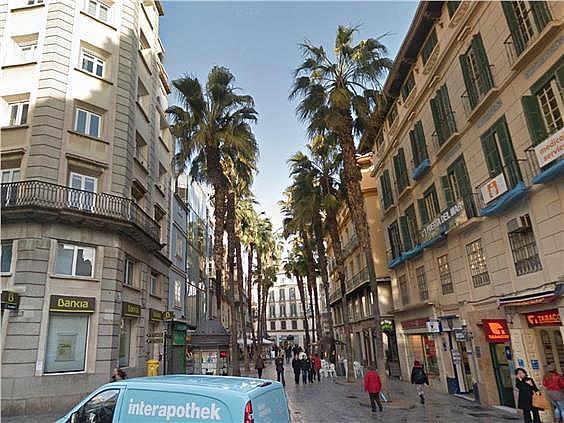 Oficina en alquiler en Centro en Málaga - 156229169