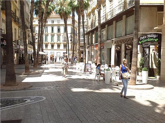Oficina en alquiler en Centro en Málaga - 156229238