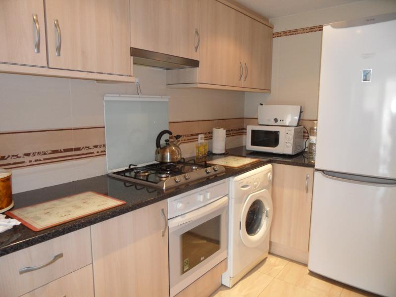 Cocina - Apartamento en venta en calle Pintor Sorolla, Calpe/Calp - 84231049