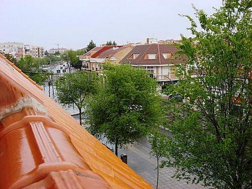 - Piso en alquiler en calle Carmen, Ciudad Real - 249303960