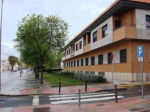 - Piso en alquiler en calle Carmen, Ciudad Real - 249304152