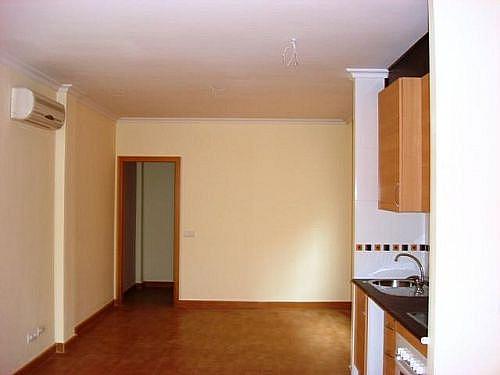 - Piso en alquiler en calle Carmen, Ciudad Real - 249304161