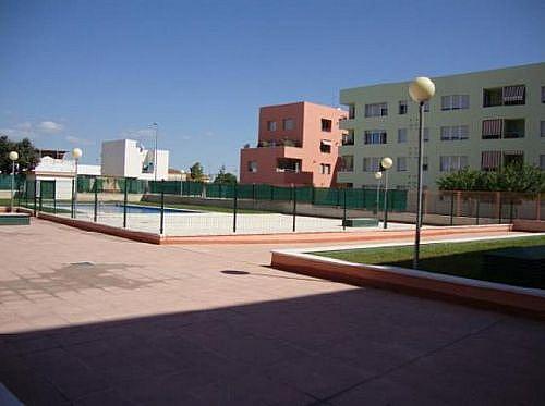 - Piso en alquiler en calle De Las Mandarinas, Jerez de la Frontera - 258697904