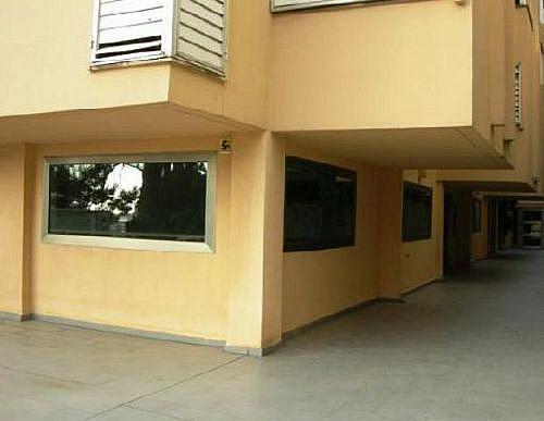Local en alquiler en calle Corb Mari, Portopí en Palma de Mallorca - 297533244