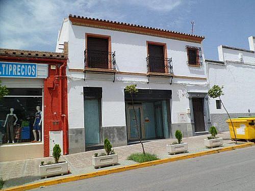 Local en alquiler en calle Constitucion, Bornos - 300481217
