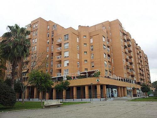 Local en alquiler en calle Gruta de Las Maravillas, Distrito Norte en Sevilla - 300481259