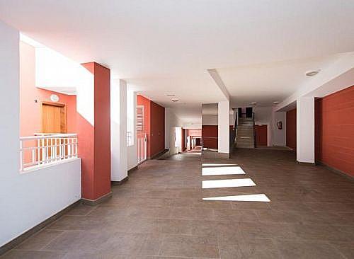 - Piso en alquiler en calle Serventia, Palmas de Gran Canaria(Las) - 180614193