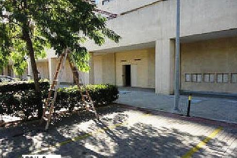- Local en alquiler en calle Del Coloso, Benalmádena Pueblo en Benalmádena - 180616287
