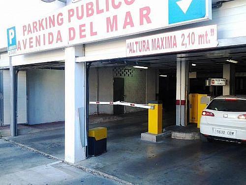 - Local en alquiler en calle Del Mar, Medina-Sidonia - 243308532