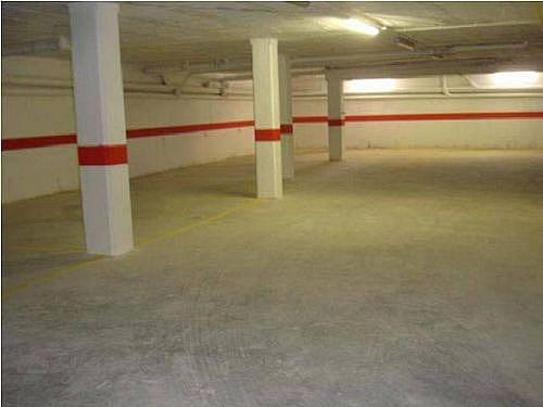 - Piso en alquiler en calle Segria, Torregrossa - 254526066