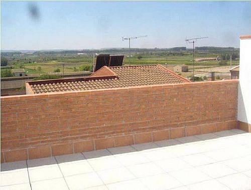 - Piso en alquiler en calle Segria, Torregrossa - 254526069
