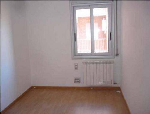 - Piso en alquiler en calle Segria, Torregrossa - 254526090