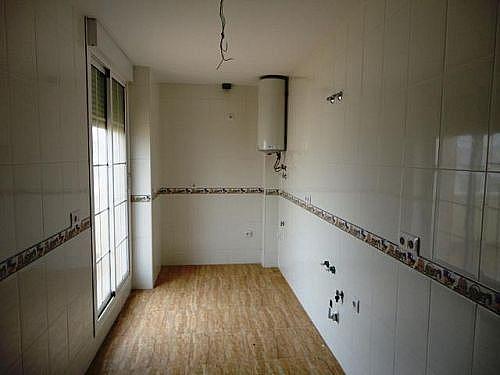 - Piso en alquiler en calle Lago, Balerma - 251552010