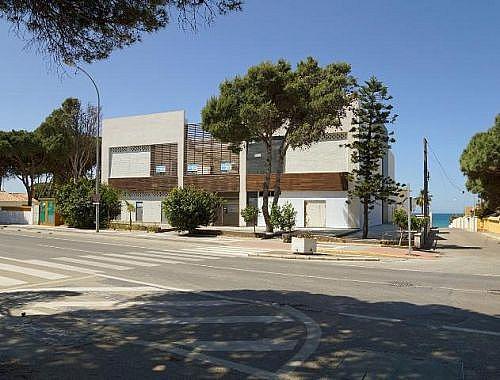 - Local en alquiler en calle De la Barrosa, Chiclana de la Frontera - 185032202
