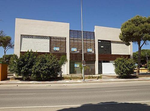 - Local en alquiler en calle De la Barrosa, Chiclana de la Frontera - 185032229