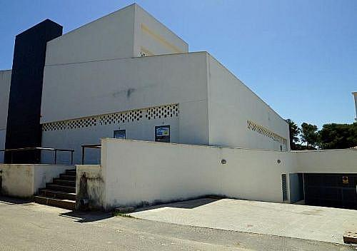 - Local en alquiler en calle De la Barrosa, Chiclana de la Frontera - 185032334