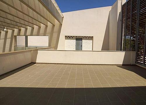 - Local en alquiler en calle De la Barrosa, Chiclana de la Frontera - 185032490