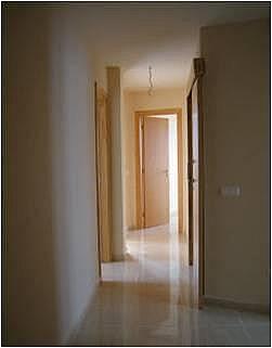 - Piso en alquiler en calle Trebolina, Vecindario - 256999160